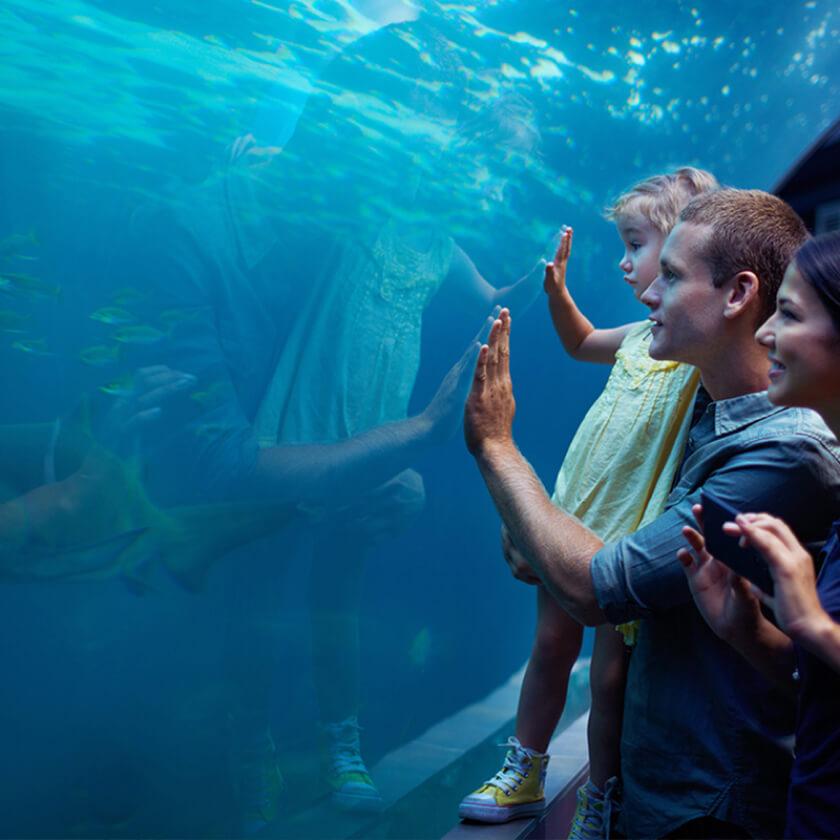 Tourism & Hospitality background image